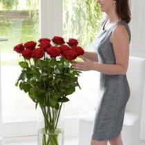 Deluxe One Dozen Roses