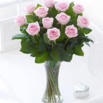 Elegant Pink Rose Vase