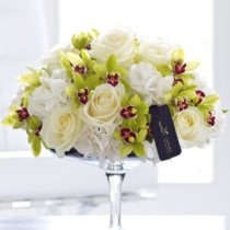 Luxury Rose, Hydrangea and Mini Cymbidium Orchid Arrangement - White and Green