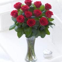 Red Elegant Vase